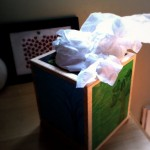 Children Live Here: The Kleenex Box