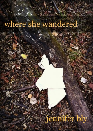 My NaNoWriMo project... Where She Wandered by Jennifer Bly