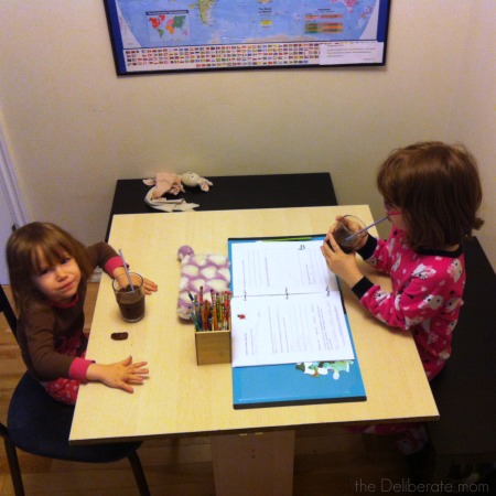 Fresh juice or smoothie break. This is an important time in our homeschool schedule!