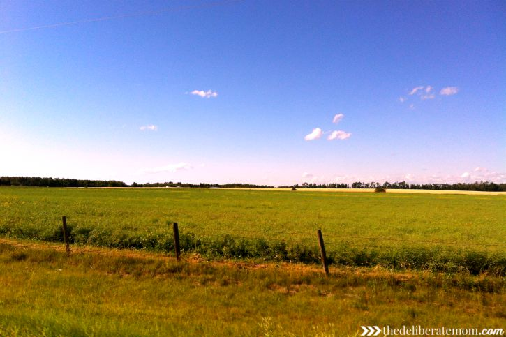Beautiful Alberta prairie scenes!