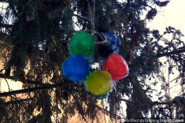 Ice ornaments - winter art to do with your homeschoolers.
