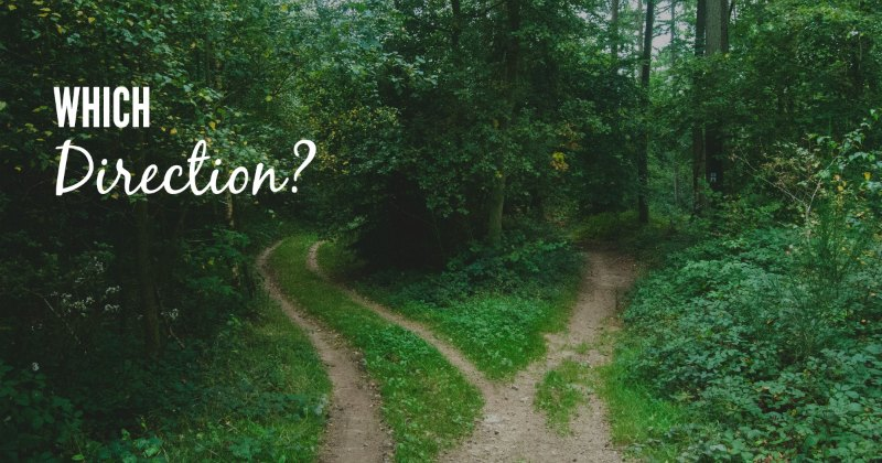 Which direction should I take with my blog?