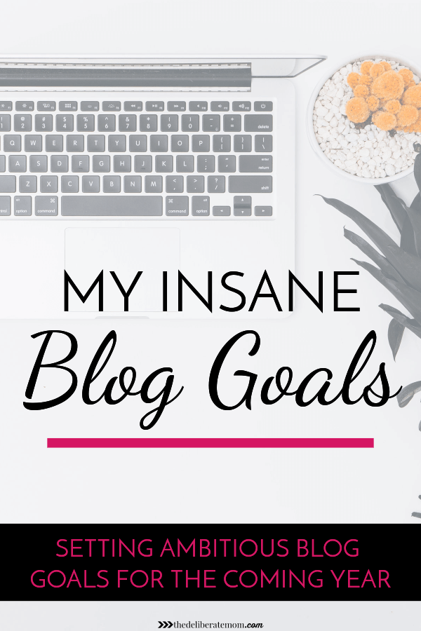 Blogging is tough, especially if you're trying to make an income! Check out this post from one blogger who shares her insane blog goals for the new year!