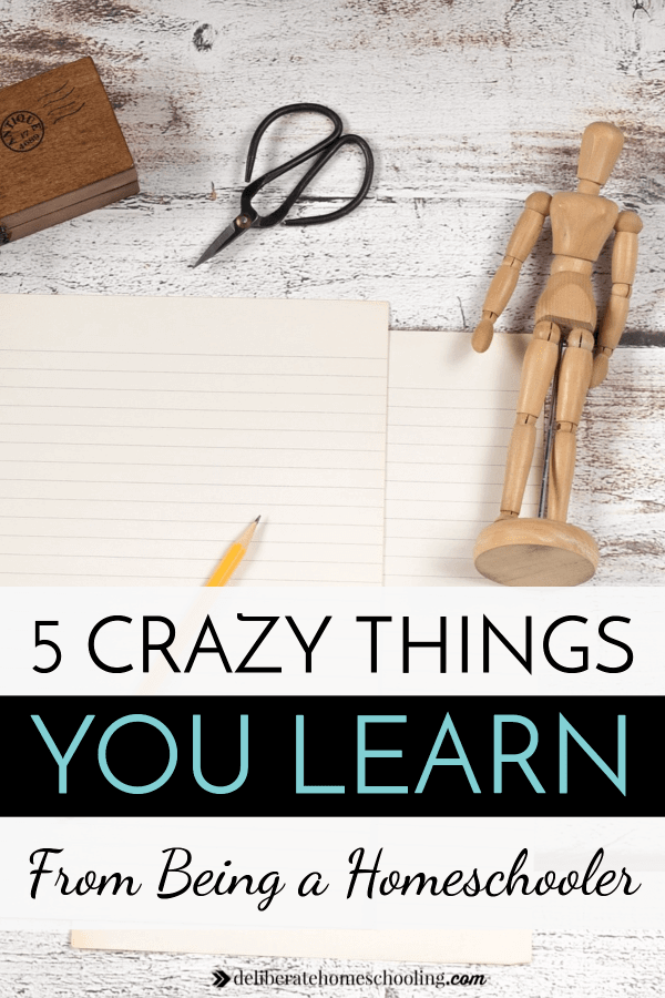 Homeschool lessons for the parent?! While I've been homeschooling for a few years, there are a few crazy things that I learned as a homeschooler.