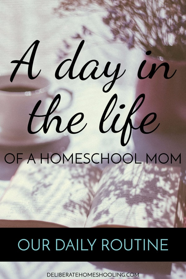Do you ever wish you could get a glimpse of a day in the life of a homeschooling mom? This is what a typical homeschool day looks like in our home.
