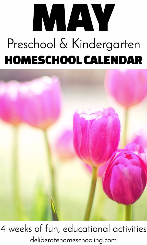Teach your young preschooler about flowers, Mother's Day, insects, and sunshine! Check out this May calendar for educational activities for your child!