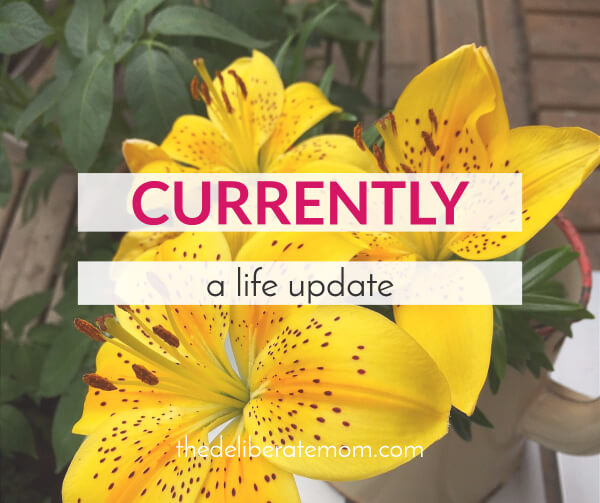 As we hit the middle of July, I realized I'm a bit overdue on a life update here on The Deliberate Mom. There's been so much going on lately. Here's a glimpse of what's happening... currently.