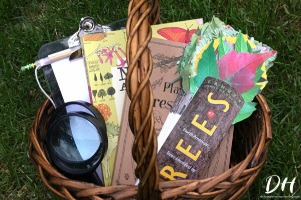 Baskets are a beautiful way to get your homeschool organized!