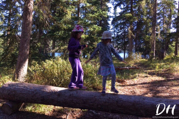 Walking across fallen tree trunks is a great physical education activity to use in a trees nature study!