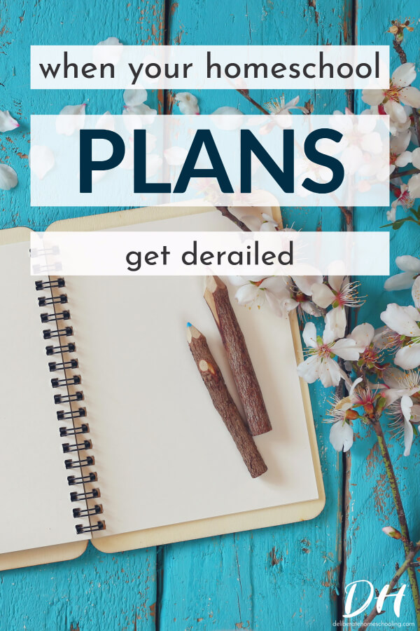 What do you do when your homeschool plans get ruined? Check out these tips and suggestions to overcome those unavoidable obstacles.