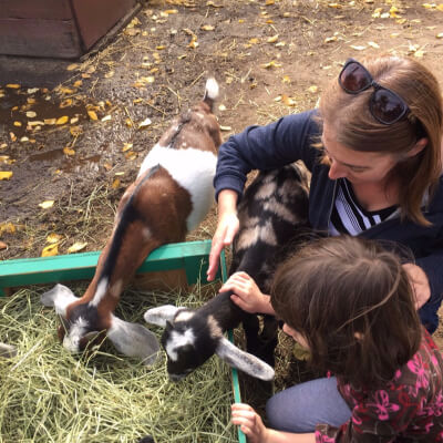 {deliberate moments: baby goats}