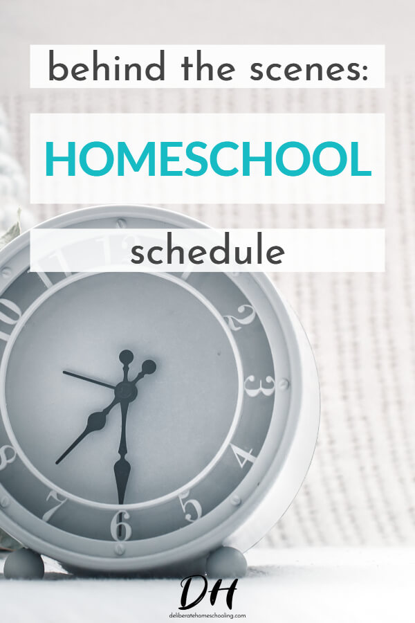 Do you ever wish you could get a glimpse of a day in the life of a homeschooling mom? This is what our typical homeschool schedule looks like. Come be a fly on our wall! #homeschoolschedule #homeschoolday #homeschoolroutine