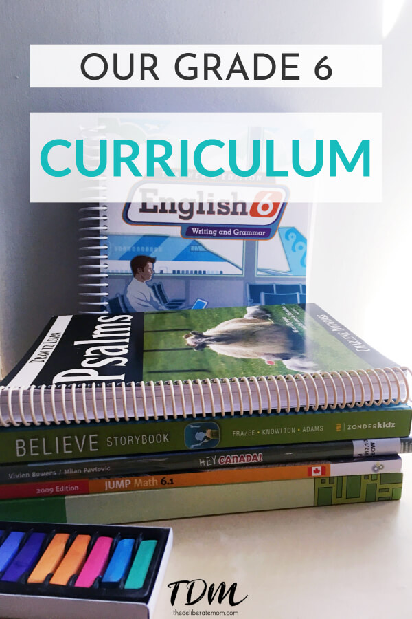 Sometimes picking your homeschool curriculum can be overwhelming. Come check out our grade 6 curriculum choices and what books we're using in all subjects.