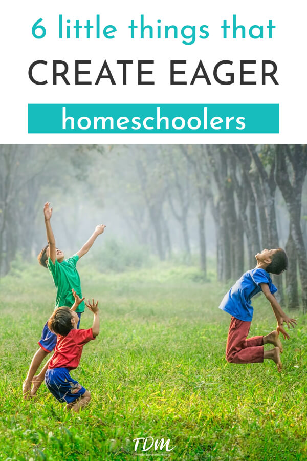 Are you a homeschooler? Do you struggle to motivate your children and make them eager homeschoolers? Here are 6 little things that can make a BIG difference in your homeschool. #homeschooltips