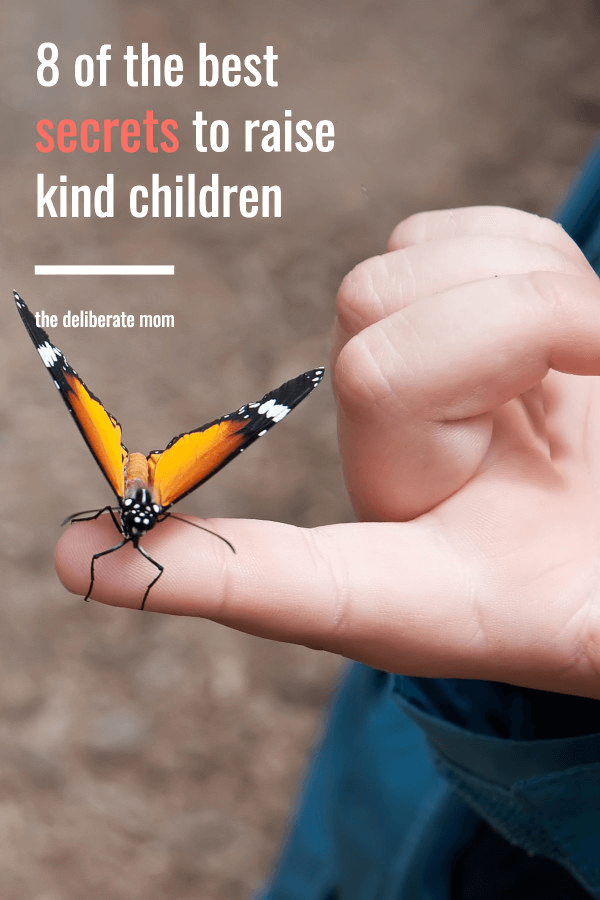 kind child holding butterfly on pointer finger